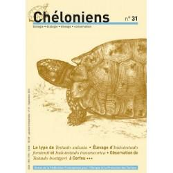 Chéloniens N°31