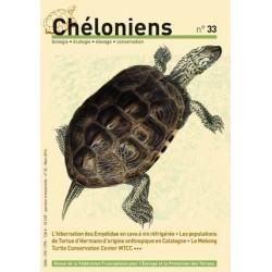 Chéloniens N°33