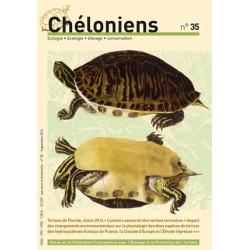 Chéloniens N°35
