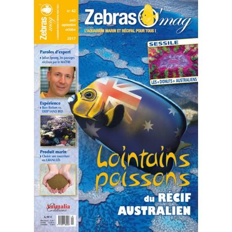 ZebrasO'mag N°42