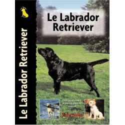Le Labrador Retriever