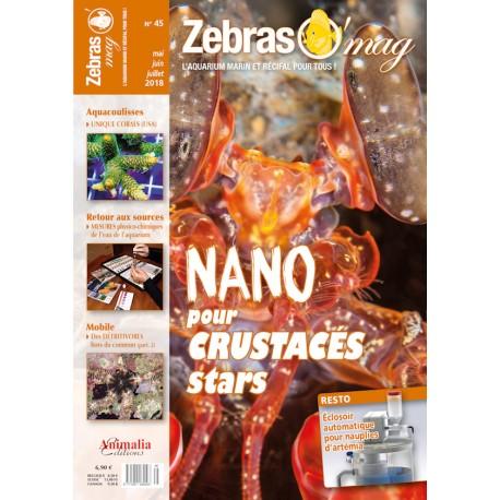 ZebrasO'mag N°45