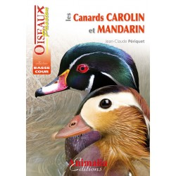 Les canards carolin et mandarin