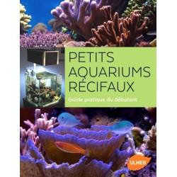 Petits aquariums récifaux : Guide pratique du débutant