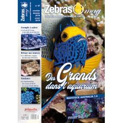 ZebrasO'mag N°47