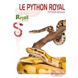 Le Python Royal - Python regius