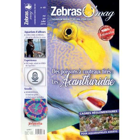 ZebrasO'mag N°49