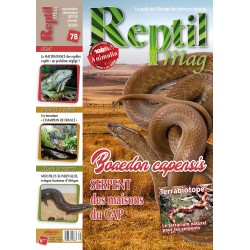 Reptilmag N°78