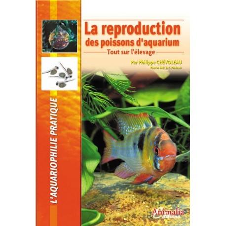 La reproduction des poissons d'aquarium