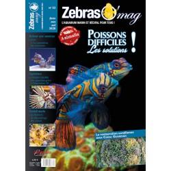 ZebrasO'mag N°52