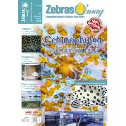 ZebrasO'mag N°54