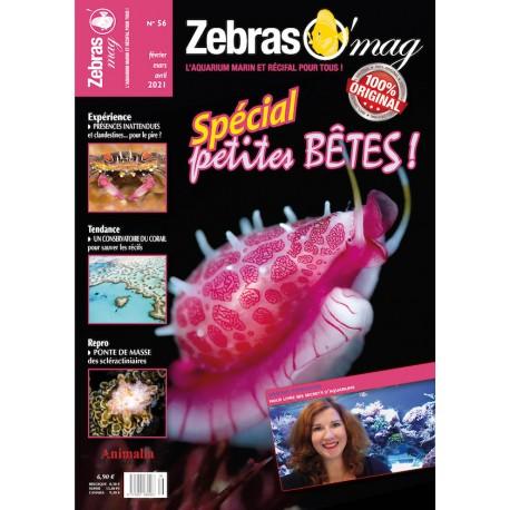 ZebrasO'mag N°56