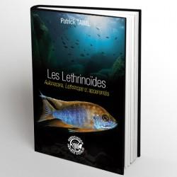 Les lethrinoides