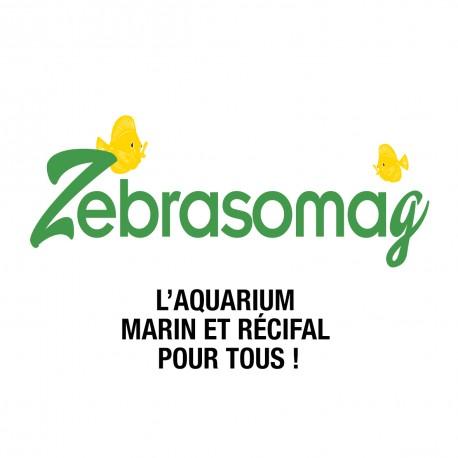 Abonnement Zebrasomag 1 an