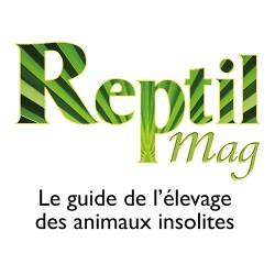 Abonnement Reptilmag 1 an