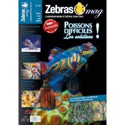 ZebrasO'mag N°52 - numérique