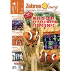 ZebrasO'mag N°53 - numérique