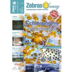 ZebrasO'mag N°54 - numérique