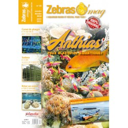 ZebrasO'mag N°55 - numérique