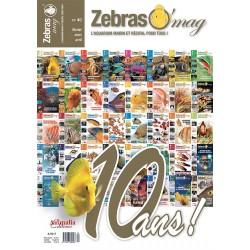 ZebrasO'mag N°40 - numérique