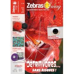 ZebrasO'mag N°44 - numérique