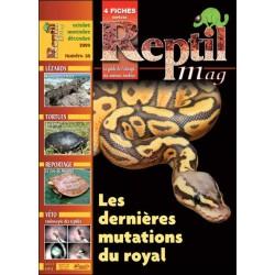 Reptilmag N°38