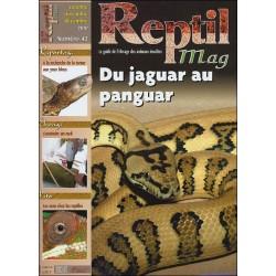 Reptilmag N°42