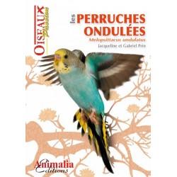 Les Perruches Ondulées