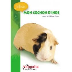 J'élève mon Cochon d'Inde