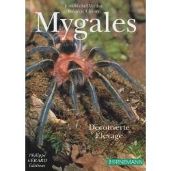 Mygales - Découvertes, élevage