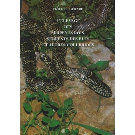 L'élevage des serpentgs rois, serpents des blés et autres colubridés