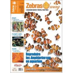 ZebrasO'mag N°19