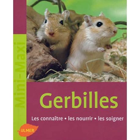 Gerbilles