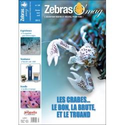ZebrasO'mag N°24