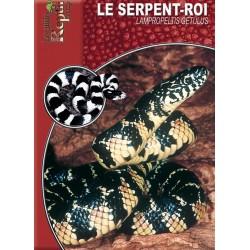 Le Serpent-Roi - Lampropeltis getulus