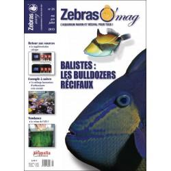 ZebrasO'mag N°25