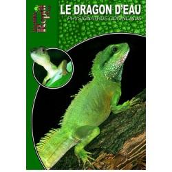 Le Dragon d'eau - Physignathus cocincinus