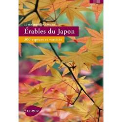 Erables du Japon