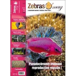 ZebrasO'mag N°4