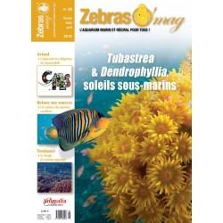 ZebrasO'mag N°28