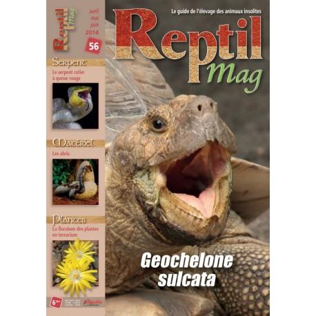 Reptilmag N°56