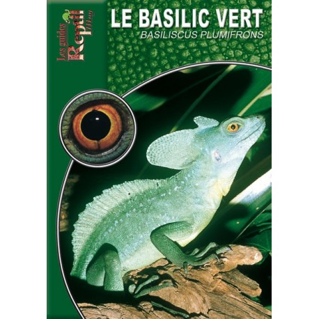 Le Basilic Vert - Basiliscus plumifrons