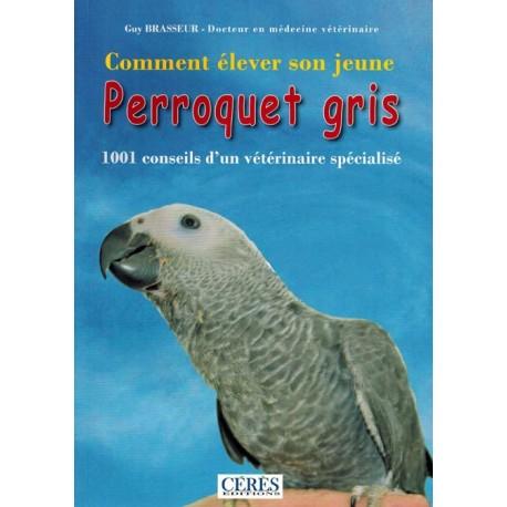 Comment élever son jeune perroquet gris